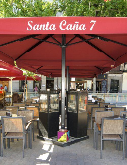 Santa Caña 7