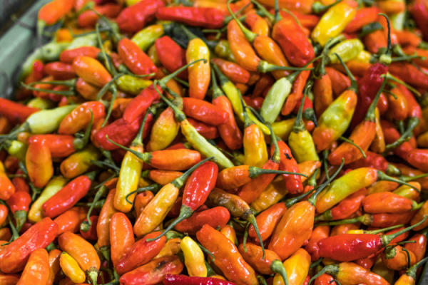 Picante en Madrid: Entra en calor con los mejores platos picantes
