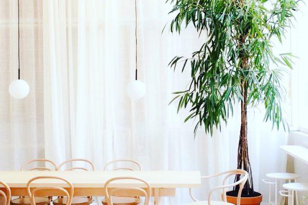 Tres restaurantes para promover la gastronomía sostenible